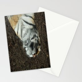 Lazy Days Sleeping in the Sun Stationery Cards