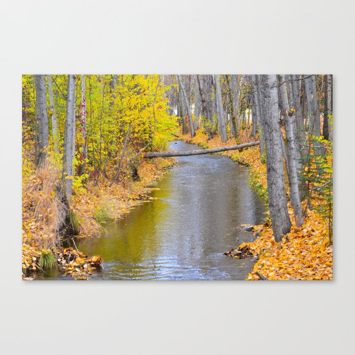 Autumn Stream II Canvas Print