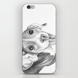 A Story To Tell :: A Beagle Puppy iPhone Skin
