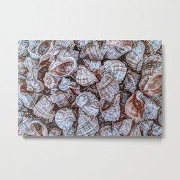 Puka Seashells Metal Print