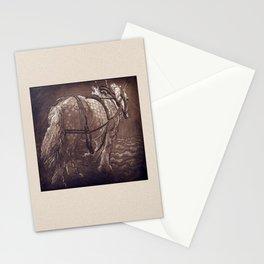 Percheron Horse Stationery Cards
