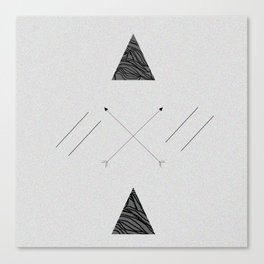 Arrows laced with Noise Canvas Print