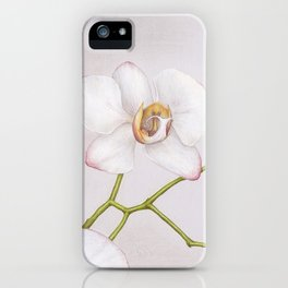 Orchid by Lars Furtwaengler | Colored Pencil / Pastel Pencil | May 2013 iPhone Case