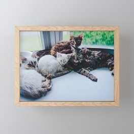 Mom Life (Chablis and her kittens, Moscato, Riesling, Chianti, and Merlot) Framed Mini Art Print