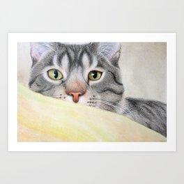 Brown Tiger Art Print