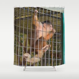 Monkey in Cage Shower Curtain
