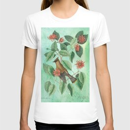 Bohemian Waxwing with Carolina Allspice, Antique Natural History Collage T-shirt
