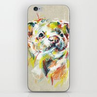 ferret iPhone & iPod Skins featuring Ferret I by Anaïs Chesnoy