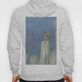 Passerotto-young sparrow Hoody