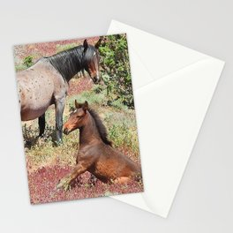 Wild horses of Nevada Stationery Cards