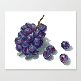 Botanical Art Japanese Grapes Canvas Print