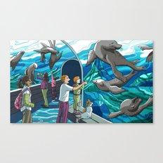 St. Louis Zoo Sea Lions Canvas Print