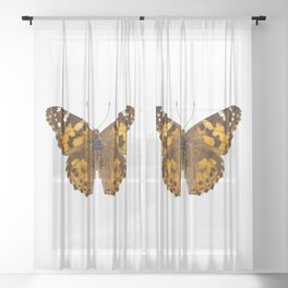 """Butterfly species Vanessa cardui """"Painted Lady"""" Sheer Curtain"""