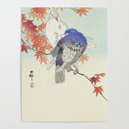 Two pigeons on autumn branch by Ohara Koson, 1900 Poster
