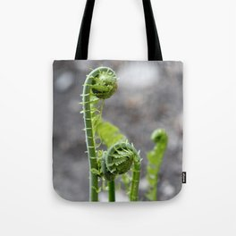 fiddle heads Tote Bag