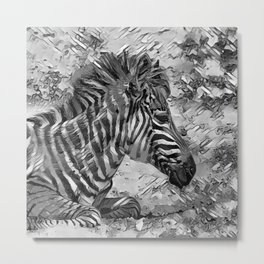 AnimalArtBW_Zebra_20170601_by_JAMColorsSpecial Metal Print