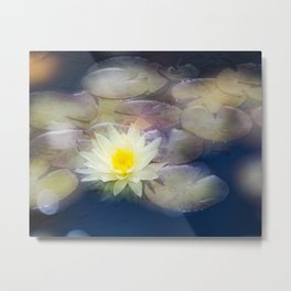 Magic Water Lily 2 Metal Print