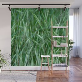 Wispy Grass Wall Mural