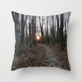 Turn Right at the Setting Winter Sun Throw Pillow