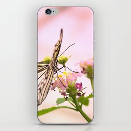 Butterfly on Pink Flowers iPhone Skin