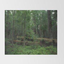 Fallen Tree in The Dense Forest Throw Blanket