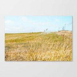 The Sound Of Crickets In Tall Grass Canvas Print