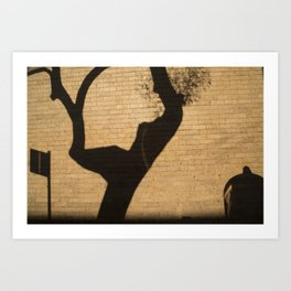 Shadow Play Art Print