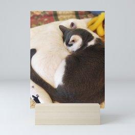 Kitten Love Mini Art Print