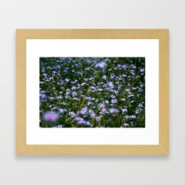 Purple Flowers Framed Art Print