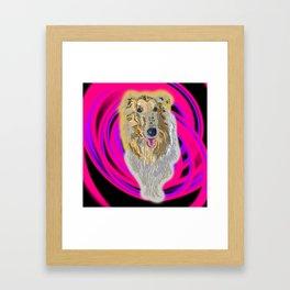 Standard Collie Framed Art Print