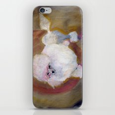 Toy Poodle iPhone & iPod Skin