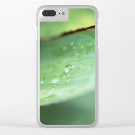 Dew Drops on Agave Leaf Clear iPhone Case