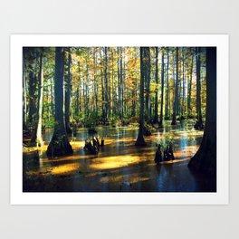 Cache River Wetlands Art Print