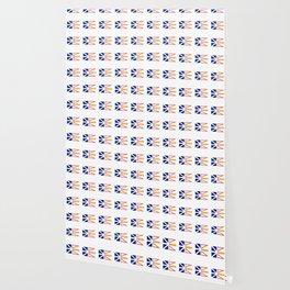 flag of newfoundland and labrador -avalon,newfoundlander,labradorian,john's,conception Wallpaper