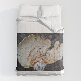 Open Comforters