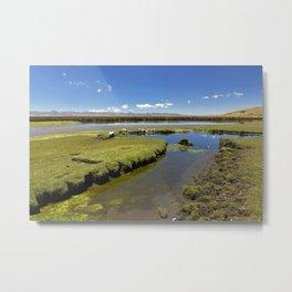Shores of Lake Metal Print