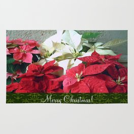 Mixed color Poinsettias 3 Merry Christmas S6F1 Rug