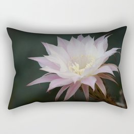 Beautiful Pale White Pink Echinopsis Oxygona Cactus Flower Rectangular Pillow