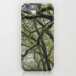Southern Live Oaks and Spanish Moss iPhone Case