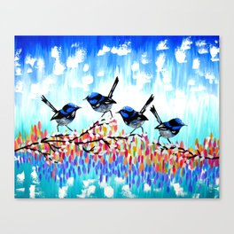Fairy Wrens Canvas Print
