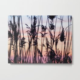 Long Point Sunset Metal Print