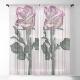 Pink Shimmering Rose Sheer Curtain