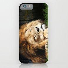 Sleeping Lion iPhone 6 Slim Case