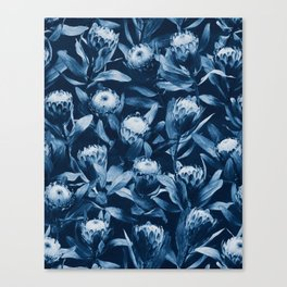 Evening Proteas - Denim Blue Canvas Print