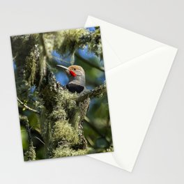 Northern Flicker Stationery Cards