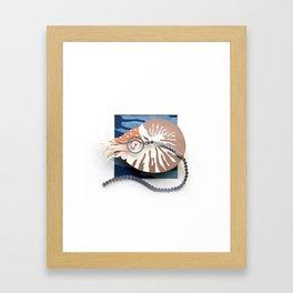 Mr. Chambered Nautilus Framed Art Print