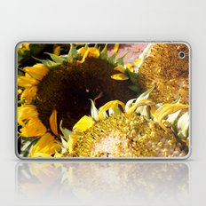 Sunflower Delight Laptop & iPad Skin