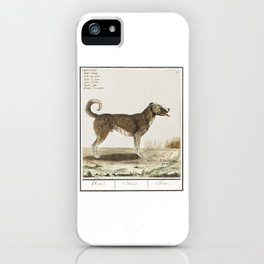 A 1500s dog painting  by Anselmus Boëtius de Boodt iPhone Case