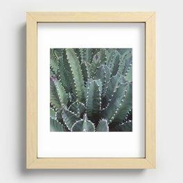 Cactus Garden Recessed Framed Print