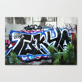 Another One Graffiti Wall Canvas Print